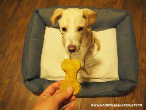 愛犬のためのおやつ作り。